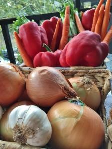 The veg for massive amounts of chili