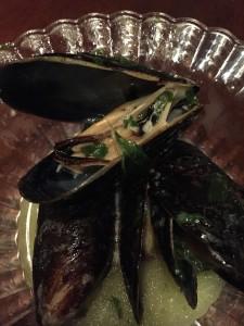 Up close mussels