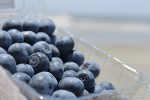 blueberries on the beach