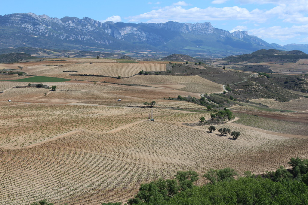 La Rioja, Spanish wine country